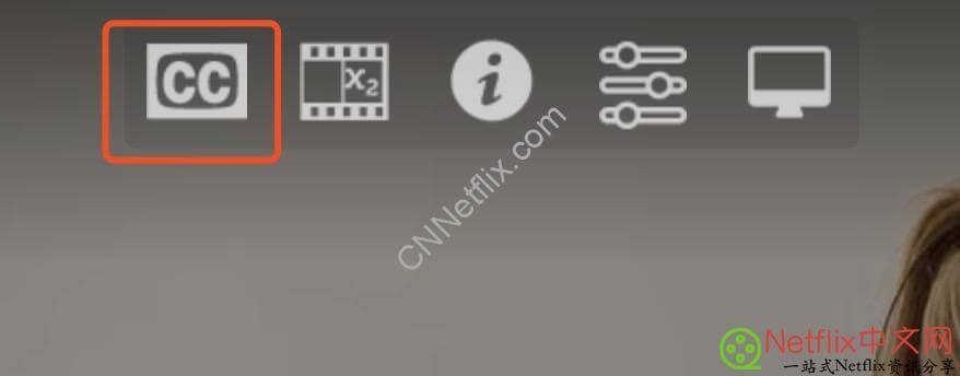 Netflix Chrome浏览器使用Super Netflix外挂字幕教程