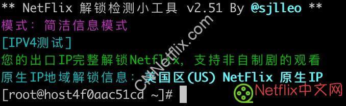 使用Dnsmasq自建DNS服务器解锁Netflix教程